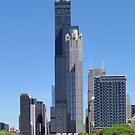 S. Wacker Drive - Chicago River S. Branch by Barrie Woodward