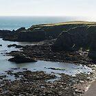 Rough Coast - Morning Light on a Sea Cliff in Scotland by Georgia Mizuleva