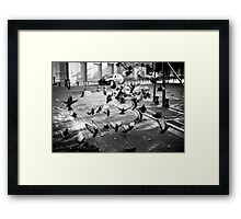 moment of takeoff Framed Print