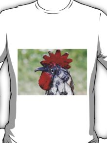 rooster craft T-Shirt