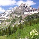 Elk Mountains by Eric Glaser
