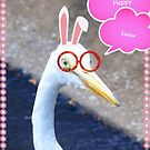Easter egret by ♥⊱ B. Randi Bailey