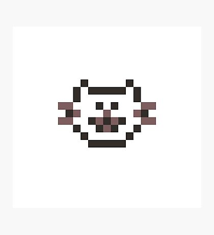 8-Bit Pixel Cat Photographic Print