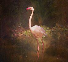 Texturize my Flamingo by Davgoss