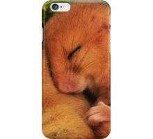 Hazel Dormouse iPhone Case/Skin