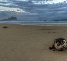 Nobby's Beach Stormy Sunrise by tismeau