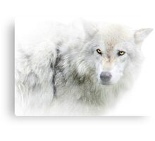 Golden Eyed Wolf in Snow  Canvas Print