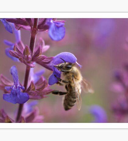 Gathering Nectar Sticker