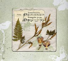 Tranquillo Windowed Gift Box by Sandra Foster