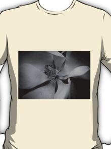 Wanderer- Magnolia T-Shirt