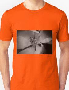 Wanderer- Magnolia Unisex T-Shirt