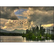 Geese Over Jericho Lake Photographic Print
