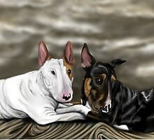 Lola and Freddie English Bull Terrier's  by Sookiesooker
