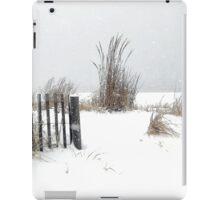 Snow and Sand iPad Case/Skin