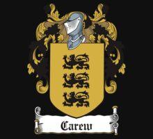 Carew (Carey, Kerry) - Cork by HaroldHeraldry