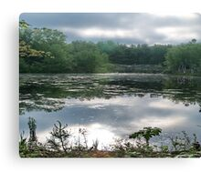 Still Water at Dawn Canvas Print