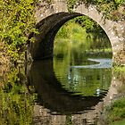 Bridge Reflection  by Martina Fagan