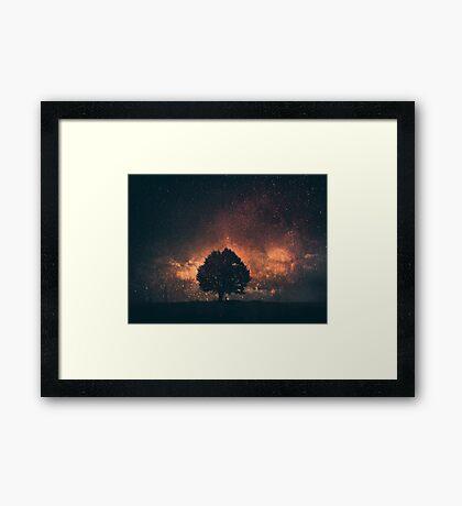 magic tree 2 Framed Print