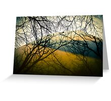 Reflector of Trees  Greeting Card