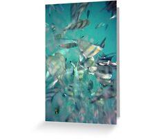 Creatures of the Ocean Greeting Card
