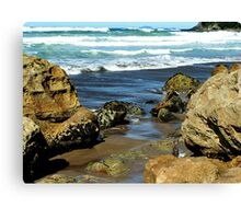 The Hot Beaches of Coromandel - New Zealand Canvas Print