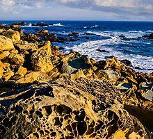 Rocky Coast by Radek Hofman