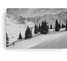 Mayflower Gulch Monochrome Canvas Print