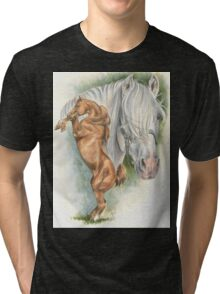 Andalusian Tri-blend T-Shirt