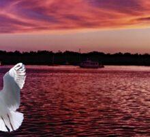 Dark Coloured Sunset with bright Seagull. Photo Art. Sticker