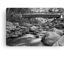 The Crossing in Black and White Canvas Print