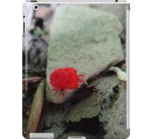 Little red bug iPad Case/Skin