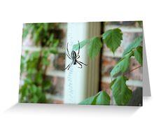 BAMF Spider Greeting Card
