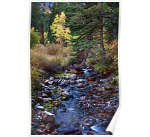 Alpine Mountain Stream Poster