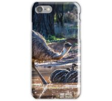 Old Man Emu and Chicks iPhone Case/Skin