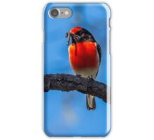Red-capped robin iPhone Case/Skin