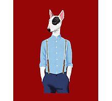 Skinhead Bull Terrier shirt Photographic Print
