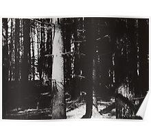 Waldeinsamkeit Poster