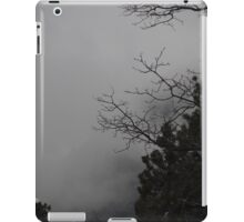 Idylwild Winter Scene iPad Case/Skin