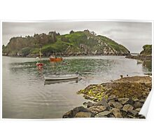 Lough Hyne - Skibbereen - West Cork - Ireland Poster