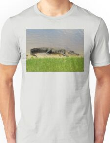 Nice and quiet Unisex T-Shirt