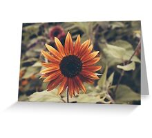 Of the Sun Greeting Card