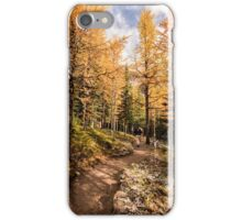 Through the Larches iPhone Case/Skin