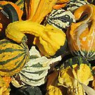 Gobs of Gourds by Monnie Ryan