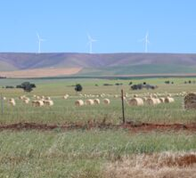 Wind Farming in South Australia Sticker
