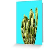 Cactus Bright Greeting Card