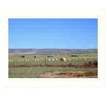 Wind Farming in South Australia Art Print