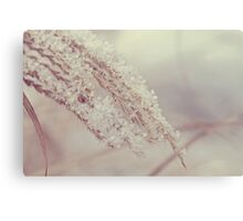 The Weight of Winter Canvas Print