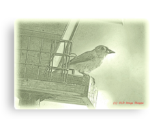 Titmouse Sumi-e Canvas Print