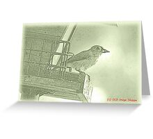 Titmouse Sumi-e Greeting Card