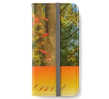 Colours of Autumn #2 iPhone Wallet/Case/Skin